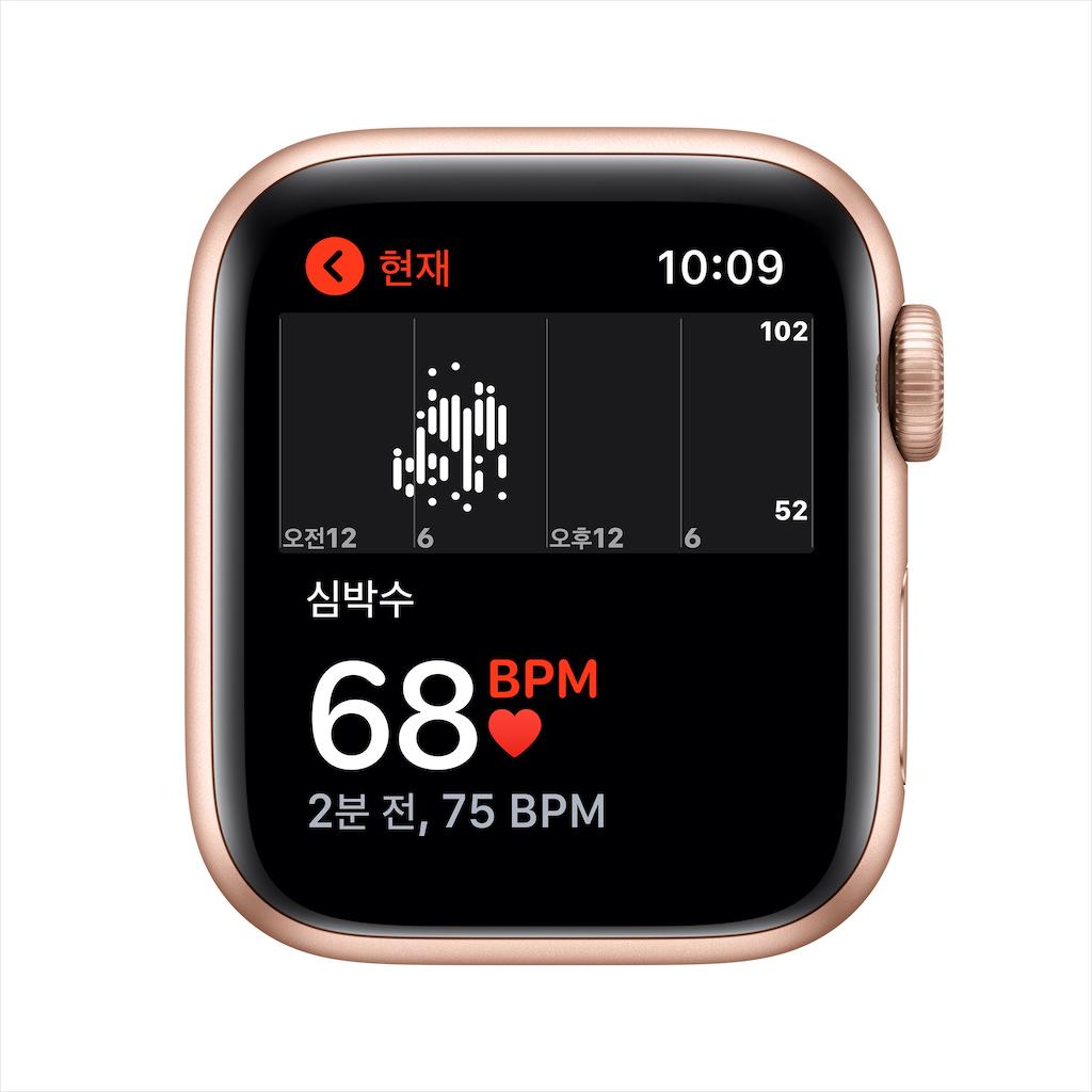 Apple Watch Series SE GPS 40mm 골드 알루미늄 케이스와 핑크샌드 스포츠밴드 MYDN2KH/A